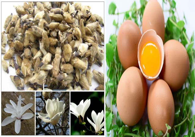 Chữa viêm mũi dị ứng bằng trứng gà và tân di