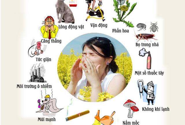 Nguyên nhân khiến bạn bị viêm mũi dị ứng