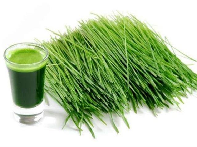 Uống nước lá hẹ - Cách chữa bệnh ho hiệu quả