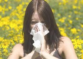 bị bệnh viêm mũi dị ứng phải làm sao