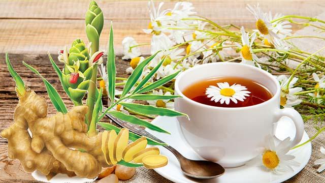 Chữa bệnh viêm họng bằng trà gừng