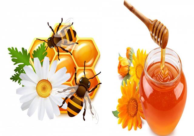 Chữa bệnh viêm xoang bằng mật ong