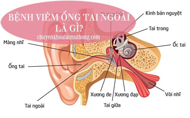 Bệnh viêm ống tai ngoài là gì?