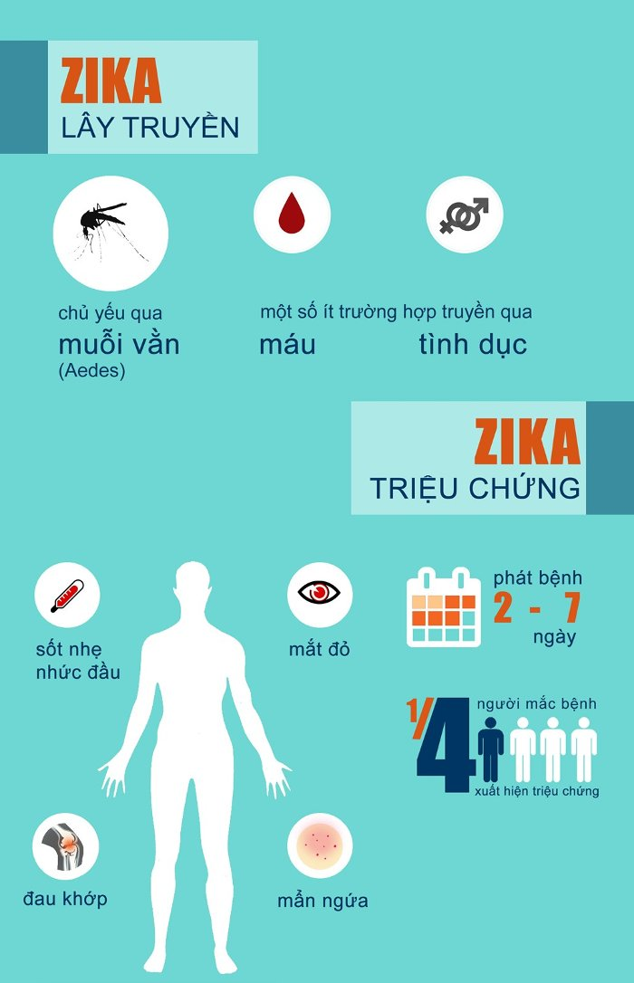 4-bieu-hien-nhiem-cum-zika-ban-can-biet-1