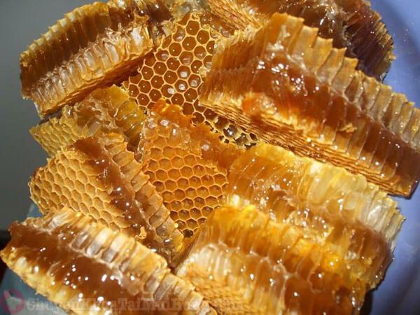 Chữa viêm tai giữa bằng sáp mật ong