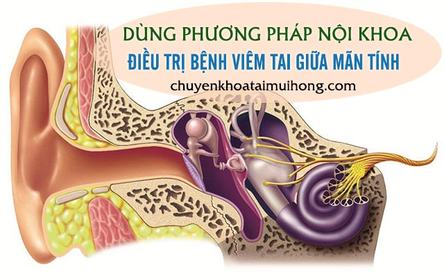 Điều trị viêm tai giữa nội khoa