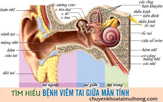 Tìm hiểu bệnh viêm tai giữa mãn tính và những điều cần lưu ý