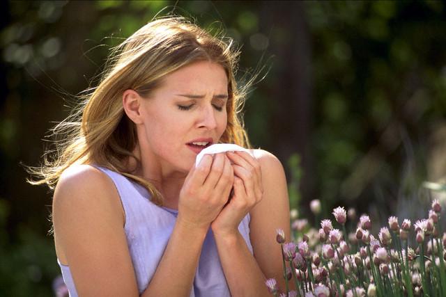 Viêm mũi dị ứng gây ra hiện tượng hắc xì hơi