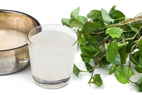 Rau diếp cá và nước vo gạo chữa bệnh viêm phế quản