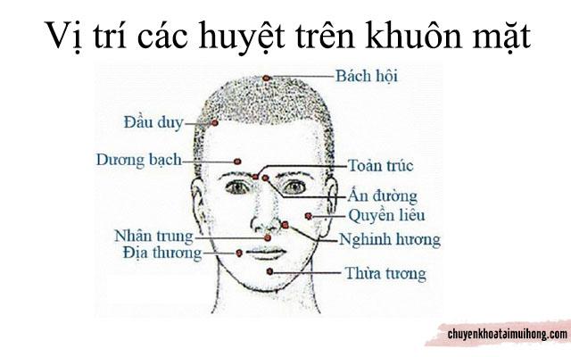 các huyệt trên khuôn mặt