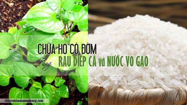 Chữa ho có đờm bằng rau diếp cá và nước vo gạo