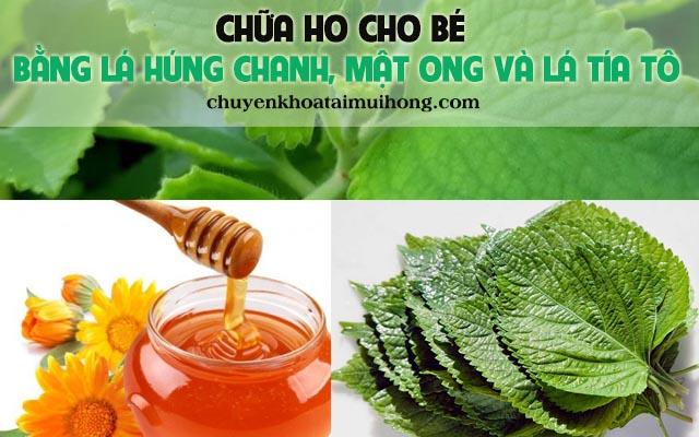Chữa ho suyễn bằng lá húng chanh kết hợp với mật ong và lá tía tô