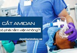 Cắt amidan có phải nằm viện không?