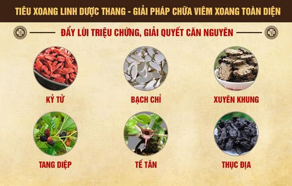 Tiêu Xoang Linh Dược Thang - bài thuốc chữa bệnh viêm xoang của Trung tâm thừa kế Đông y Việt Nam