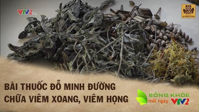 Bài thuốc chữa viêm xoang nổi tiếng của nhà thuốc Đỗ Minh Đường